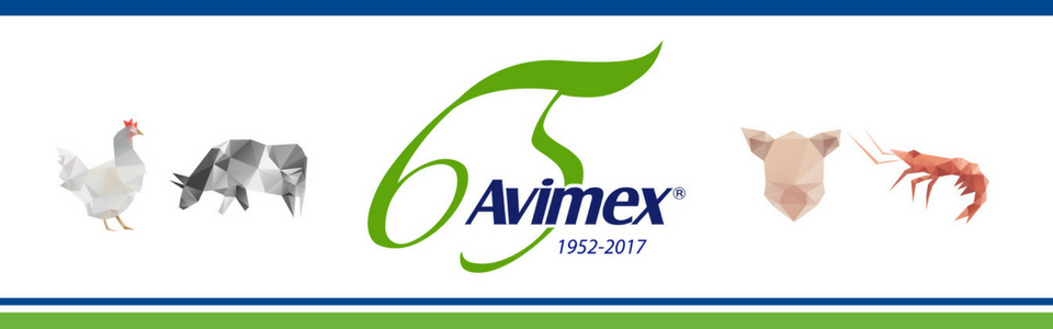 65 Años Avimex