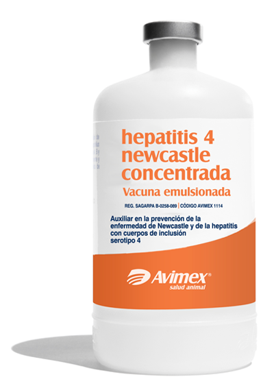 hepatitis 4 newcastle concentrada vacuna emulsionada