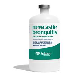 newcastle bronchitis killed vaccine