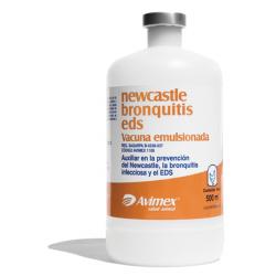 newcastle bronchitis eds killed vaccine