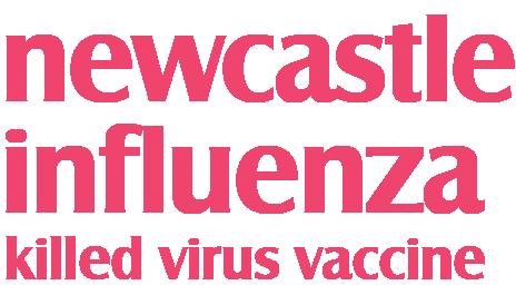newcastle influenza killed virus vaccine